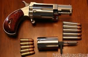 NAA Sidewinder 22 Magnum Revolver