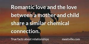 Relationships True Facts #582 - Meetville Blog