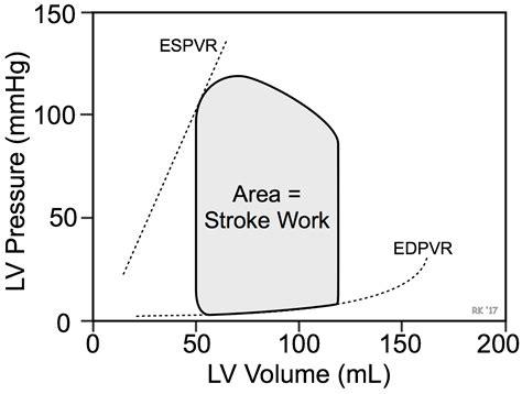 Pv Diagram Unit by Cv Physiology Stroke Work And Cardiac Work