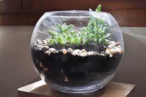 Terrarium Plante Deco : terrarium plante grasse bocal ~ Dode.kayakingforconservation.com Idées de Décoration