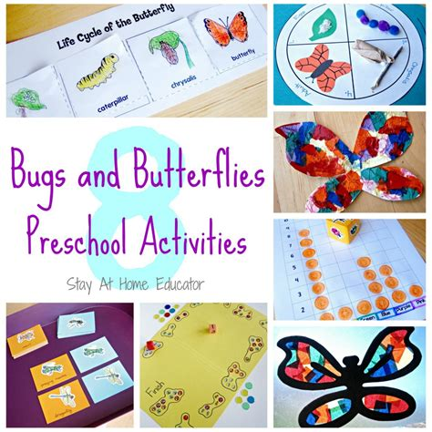 insects activities for preschoolers bugs and butterfies theme preschool activities 860