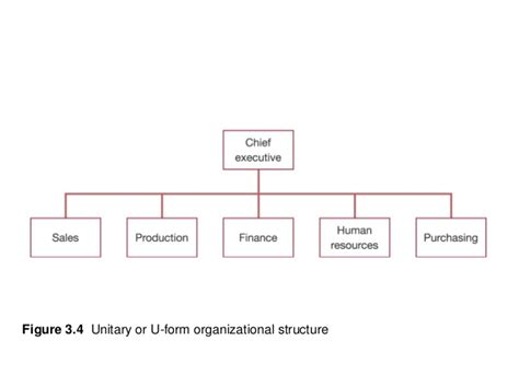 U Form by Theory Of Firm