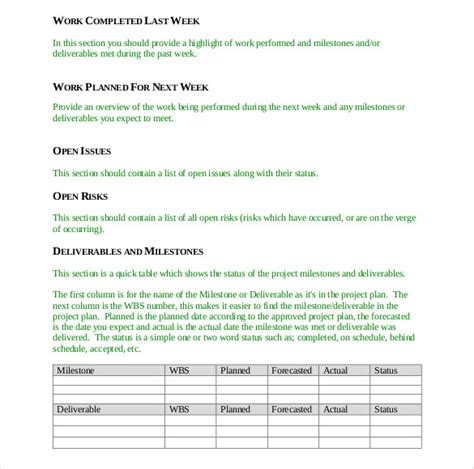 5 Project Status Report Template Teknoswitch Project Status Report Template Excel Format Rag Status