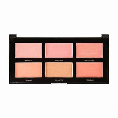 Palette Profusion Blush Makeup Eyeshadow Cosmetics Target