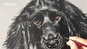 Ich Suche Einen Großen Hund : einen hund mit acryl malen youtube ~ Jslefanu.com Haus und Dekorationen
