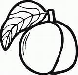 Peach Colorare Coloring Pesca Bambini Frutta Disegni Disegnidacolorareonline Disegno Anni Clipart Stampare Printable Brzoskwinia Stampa Pourfemme Clip Outline Immagini Google sketch template