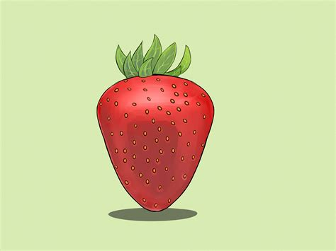 draw strawberries  steps  pictures wikihow