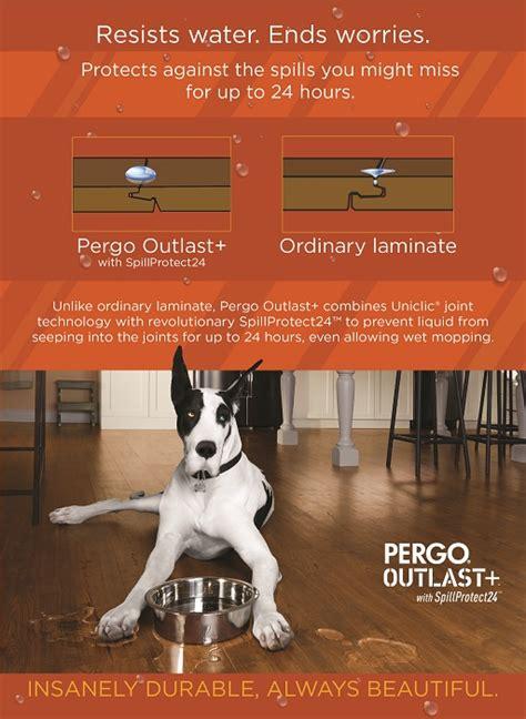 pergo flooring reviews dogs top 28 pergo flooring reviews dogs pergo flooring reviews goenoeng pergo flooring reviews