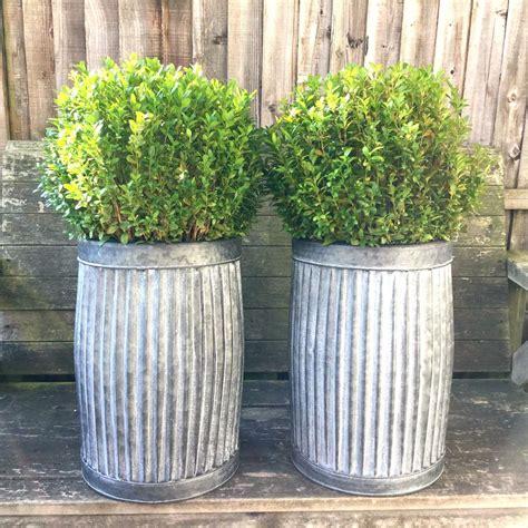 Metal Flower Pots by Vintage Style Grey Zinc Galvanised Metal Garden Planter