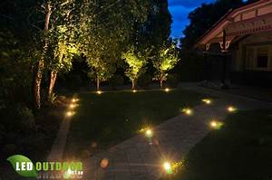 All inground led s lights a lawnmower dog tough