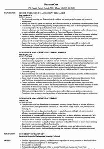 pretty forest management resume contemporary resume With texas workforce resume template