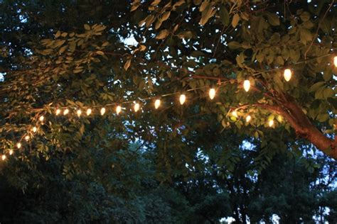backyard ideas daisymaebelle