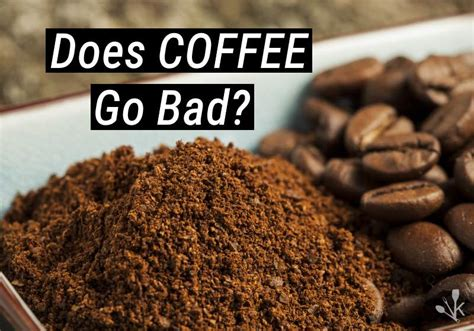 Does Coffee Go Bad Or Expire? How Long Does It Last Coffee Prince Raw Mug Mercedes Benz Hsn Code Vs Goblin Joulies With Eng Sub 7 Part 2