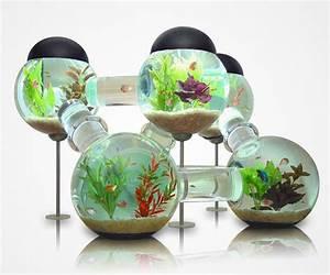 Coole Aquarium Deko : 22 unusual and creative aquariums bored panda ~ Markanthonyermac.com Haus und Dekorationen