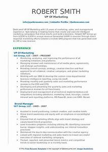 Build Resume Free Download Vp Of Marketing Resume Samples Qwikresume