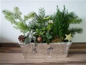 Herbstliche Blumenkästen Bilder : weihnachtliche blumenk sten die bastelemma ~ Lizthompson.info Haus und Dekorationen