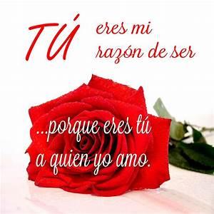 Frases para enamorar con rosas Imagenes bonitas de amor con frases