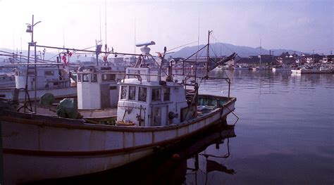 Fishing Boat Japanese by Japanese Fishing Boats Photograph