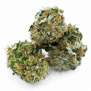 Achat Vinaigre Blanc En Gros : grossiste cbd suisse vente cannabis l gal prix achat weed en gros ~ Melissatoandfro.com Idées de Décoration