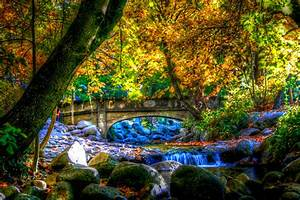Bridge, And, Waterfall, Stream, In, Autumn, Forest, Hd, Wallpaper