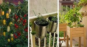 Jardin Et Balcon : 6 conseils pour faire son potager sur son balcon ~ Premium-room.com Idées de Décoration