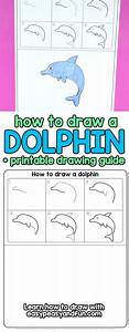How to Draw a Dolphin Step by Step for Kids + Printable ...