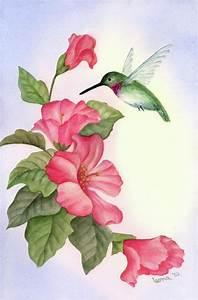hummingbird paintings | Hummingbird With Hibiscus Painting ...