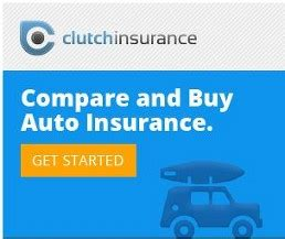 gator auto insurance  clearwater clearwater fl