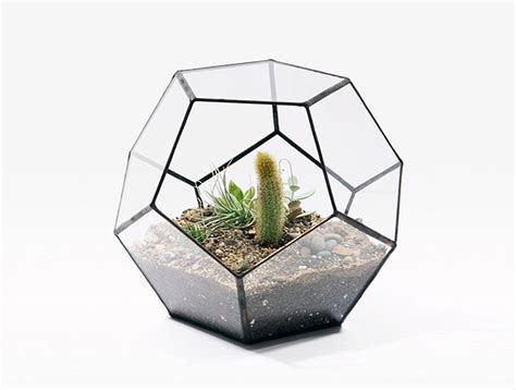 terrarium design score solder s prismatic terrariums come with their own crystal inhabitat green design