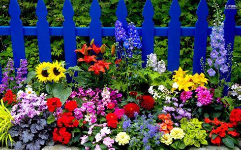 Summer Flowers Wallpapers  Wallpaper Cave