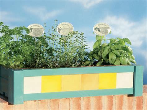 piante da davanzale fioriera sul davanzale per piante aromatiche facile da