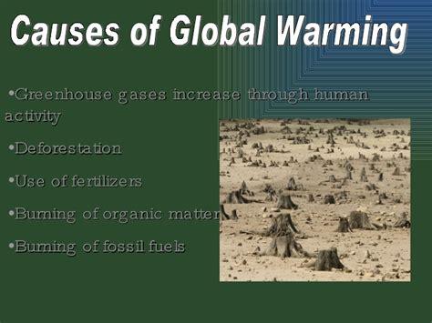 Global Trends essays | Example Essays