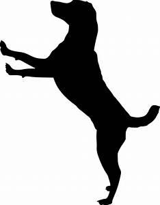 Free photo Silhouette Animal Pet Dog Run Dog House Doggy ...