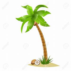 Coconut tree clipart - Clipground