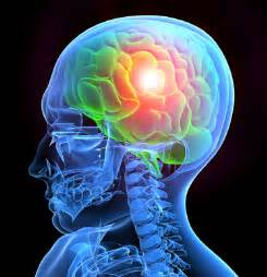 Neurosurgery Brain Tumor