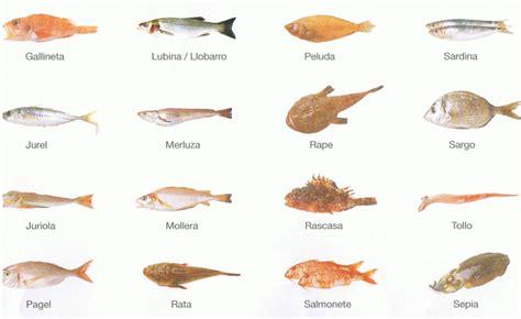 cuisiner des ecrevisses poissons de la mer méditerranée en espagne catalogue avec