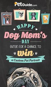 Happy Dog Mom's Day Contest