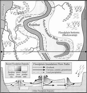 Meandering River Floodplain Deposits And Processes Of Inundation For A