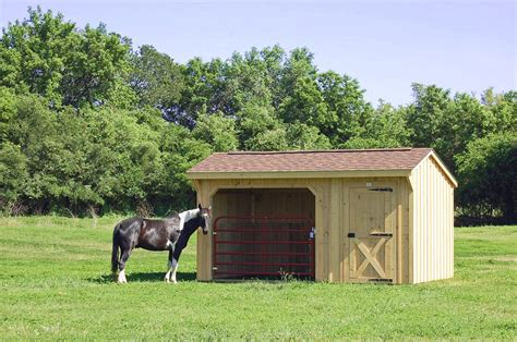 shed run barns horse tack room barn sheds portable row plans 10x16 deer shelter horses stalls shedrow storage built structures