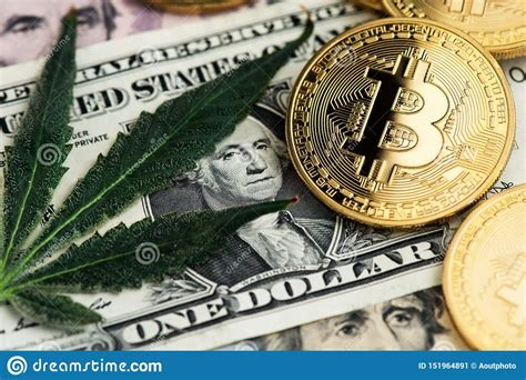 In december 2017, it reached a record high of almost $20,000. Cannabis Medical Marijuana Leaf With Bitcoin Cryptocurrency Coins And US Dollar Banknotes. Stock ...