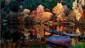 Fall, Nature, Trees, Wallpapers, Hd, Desktop, And, Mobile