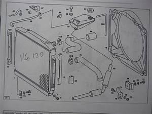 W116 Vs W123 Radiators