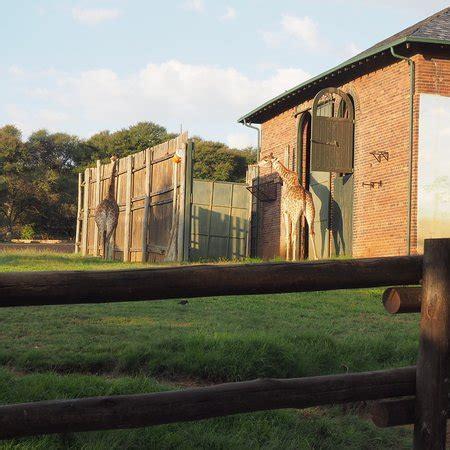 johannesburg zoo tripadvisor save attraction africa south parks