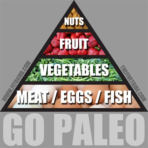 cuisine paleo start up guide to following zone paleo crossfit fms