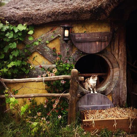 Cat From Hobbiton {new Zealand}  Traveling Cats  Travel