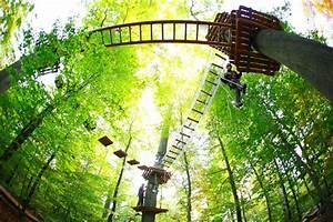 Kletterwald Darmstadt Einverständniserklärung : fotos kletterwald darmstadt ~ Themetempest.com Abrechnung