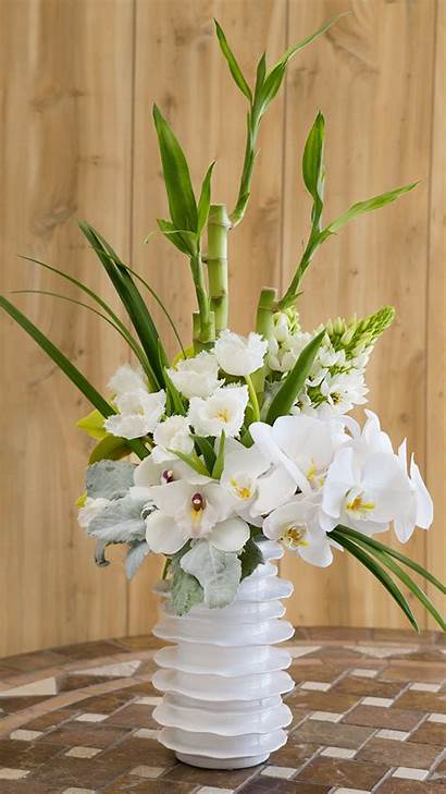 Orchid Flowers Planks Vase Boards Wood