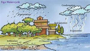 Explain Water Cycle With Diagram For Class 7