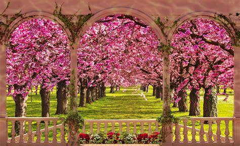 Primavera 4k Wallpapers by Fondos De Pantalla De Primavera Wallpapers Hd Fondo De