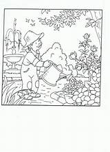Plantation Coloring Template Sketch sketch template
